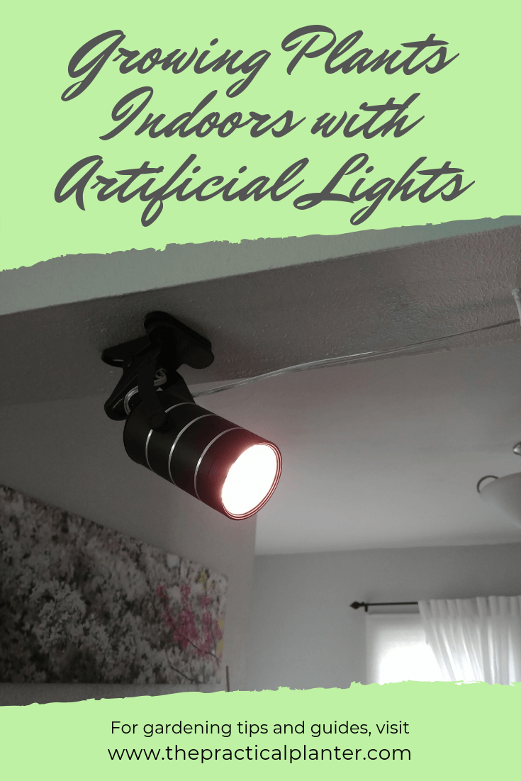 Growing Plants Indoors With Artificial Lights All You Need