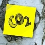 Do Plants Need Carbon Dioxide