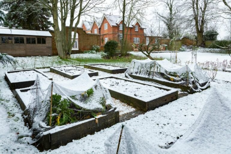 Raised Garden Beds Covered in Snow