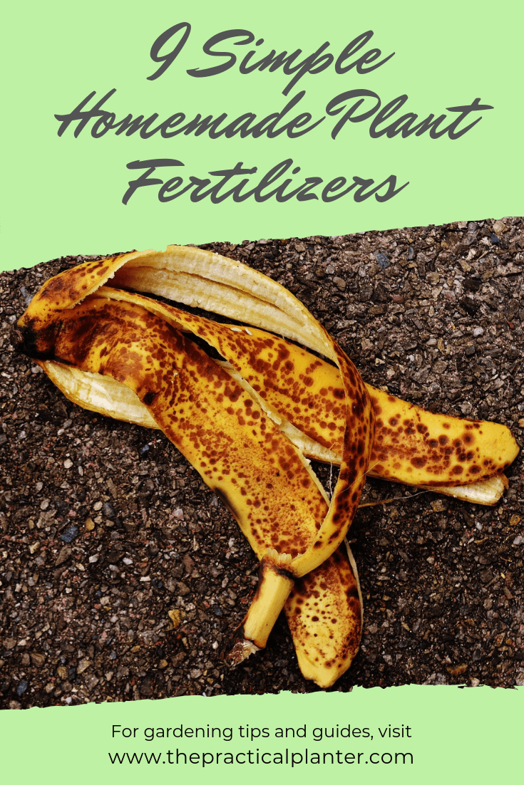 9 Simple Homemade Plant Fertilizers (Using Household Items)