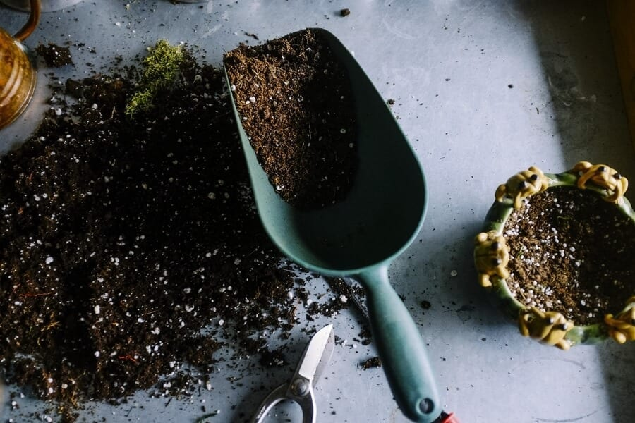 Use Potting Soil in the Ground
