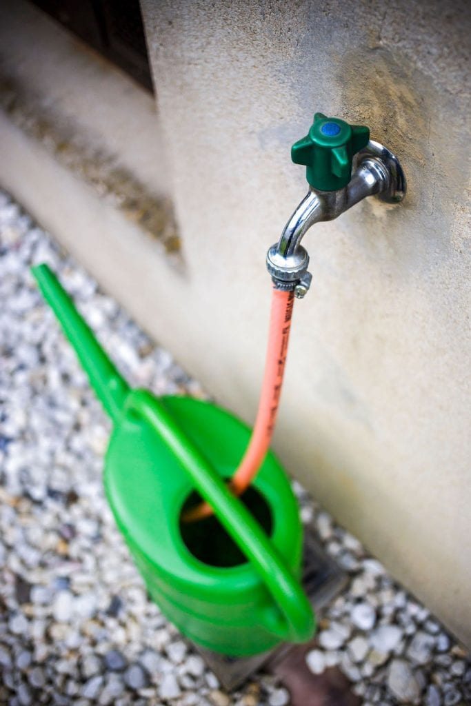 Filling watering can with tap water