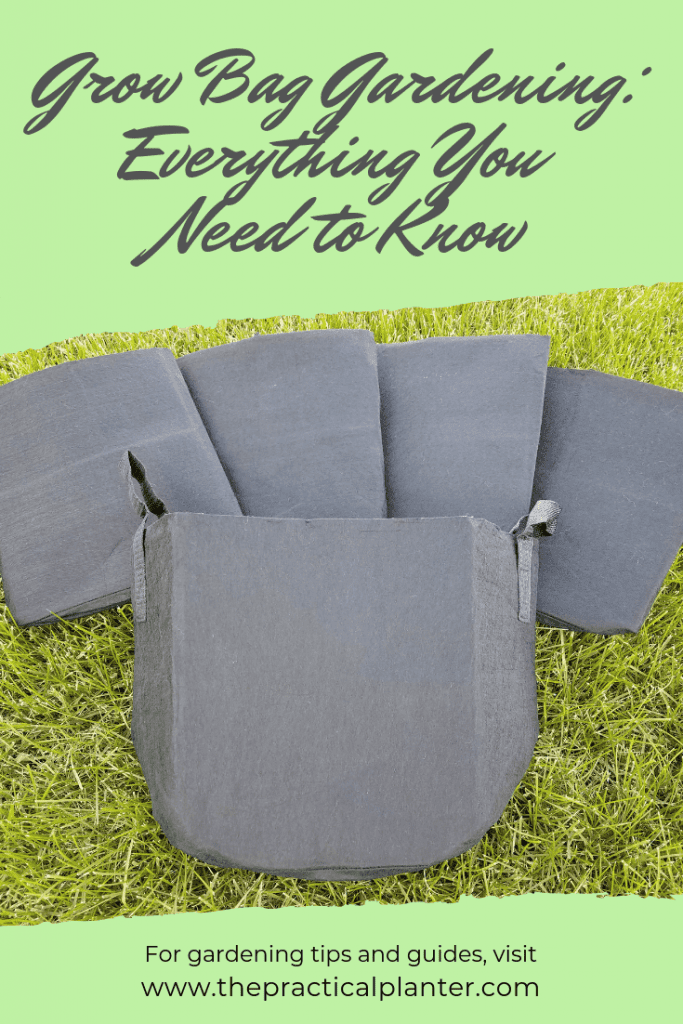 Grow Bag Gardening Benefits, How to Use, Sizing and More