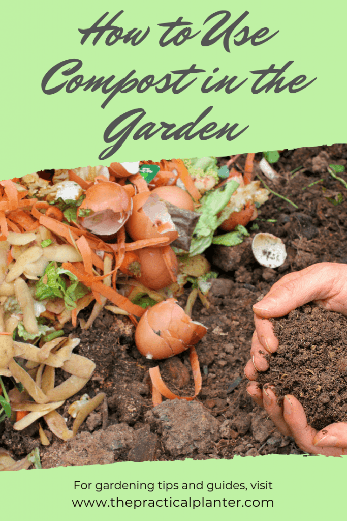 How to Use Compost in the Garden (Turn Your Waste into Plant Food)