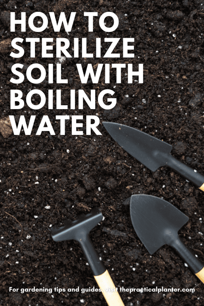 How to Sterilize Soil with Boiling Water (Plus 3 Alternative Methods to Try)